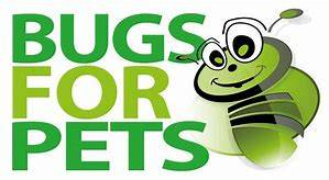 bugs for pets afb
